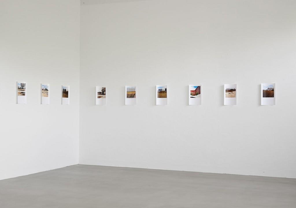Francisca Gómez Landschaft mit Wachstum 2013/14